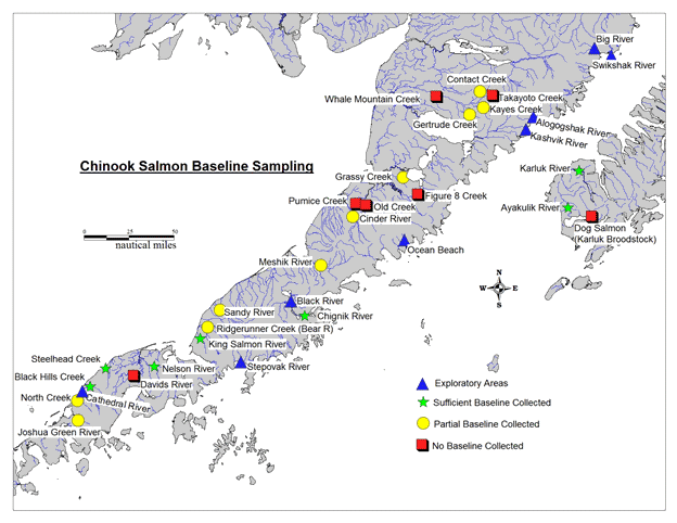 Figure 1-Map of Westward Region Alaska Chinook salmon baseline samples collected and exploratory areas for 2014 depicted.
