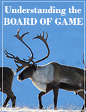 Board of Game Process