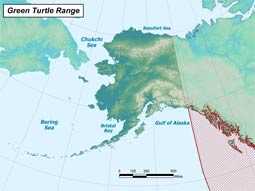 Green Sea Turtle range map